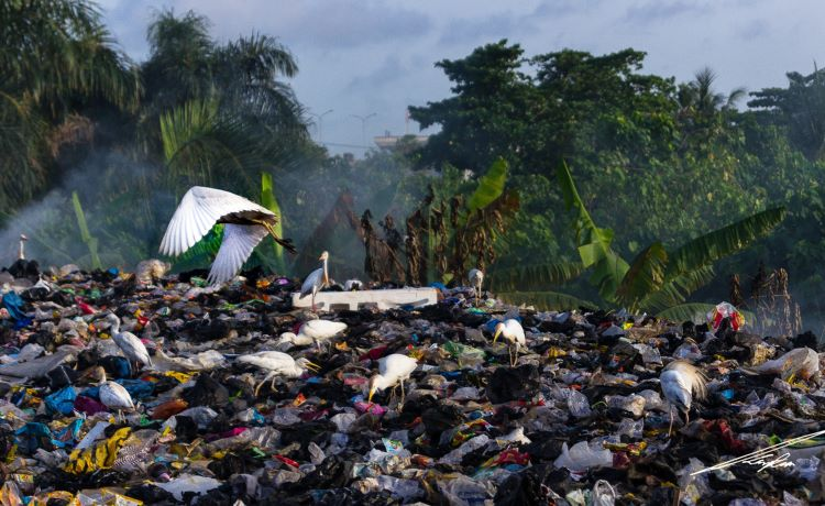 Lixão na Nigéria
