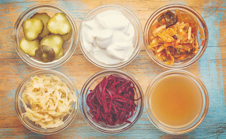alimentos prebioticos o que sao
