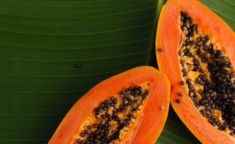 Quais são os benefícios de comer frutas?