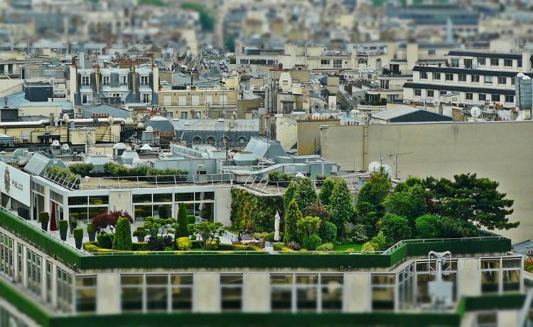 Telhados e paredes verdes em condomínios