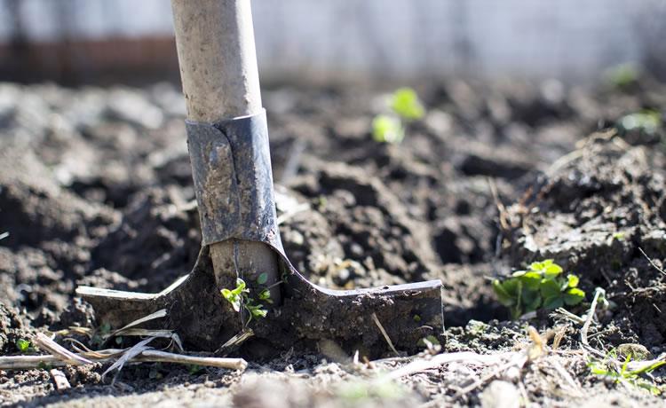 Agricultura de base ecológica