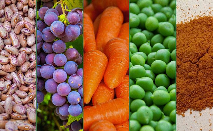 O que s o antioxidantes veja quais alimentos s o ricos nessas subst ncias e entenda por que - Antioxidantes alimentos ricos ...