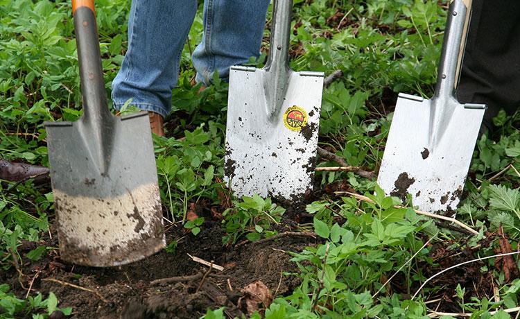 Fazendo horta orgânica