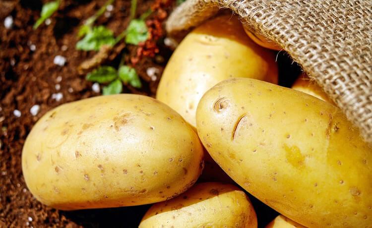 La batata es buena para la dieta