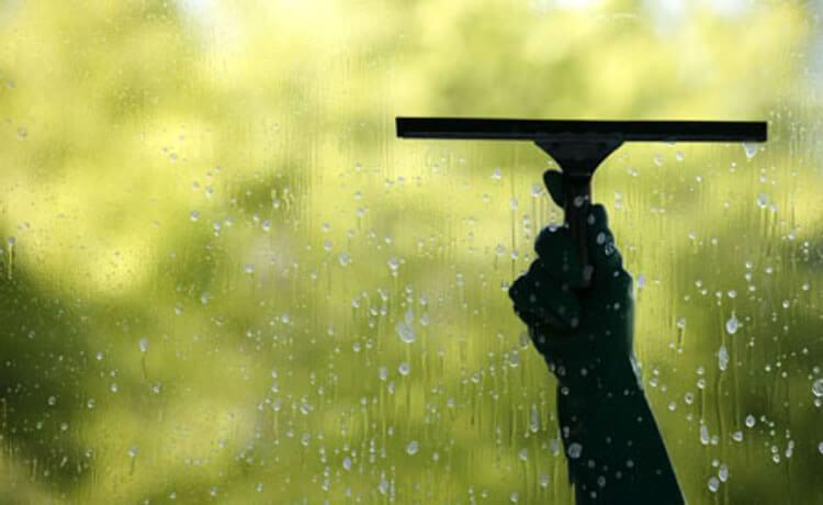 Limpando janela