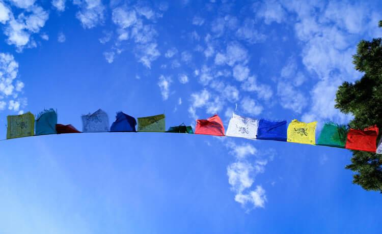 Poupe água e energia ao lavar e secar roupas
