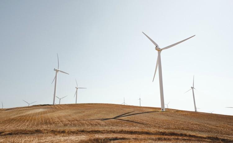 Parque energia eólica