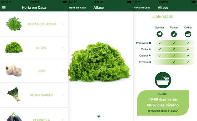 Aplicativo Plantit – Horta em Casa