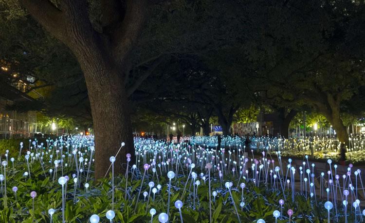 """Jardins luminosos"", Discovery Green, Houston TX, USA 2014"