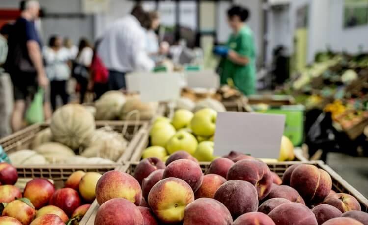 Transição nutricional na Ásia e Europa