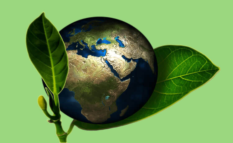 "Curso online: ""proteção ambiental x desenvolvimento socioeconômico"""